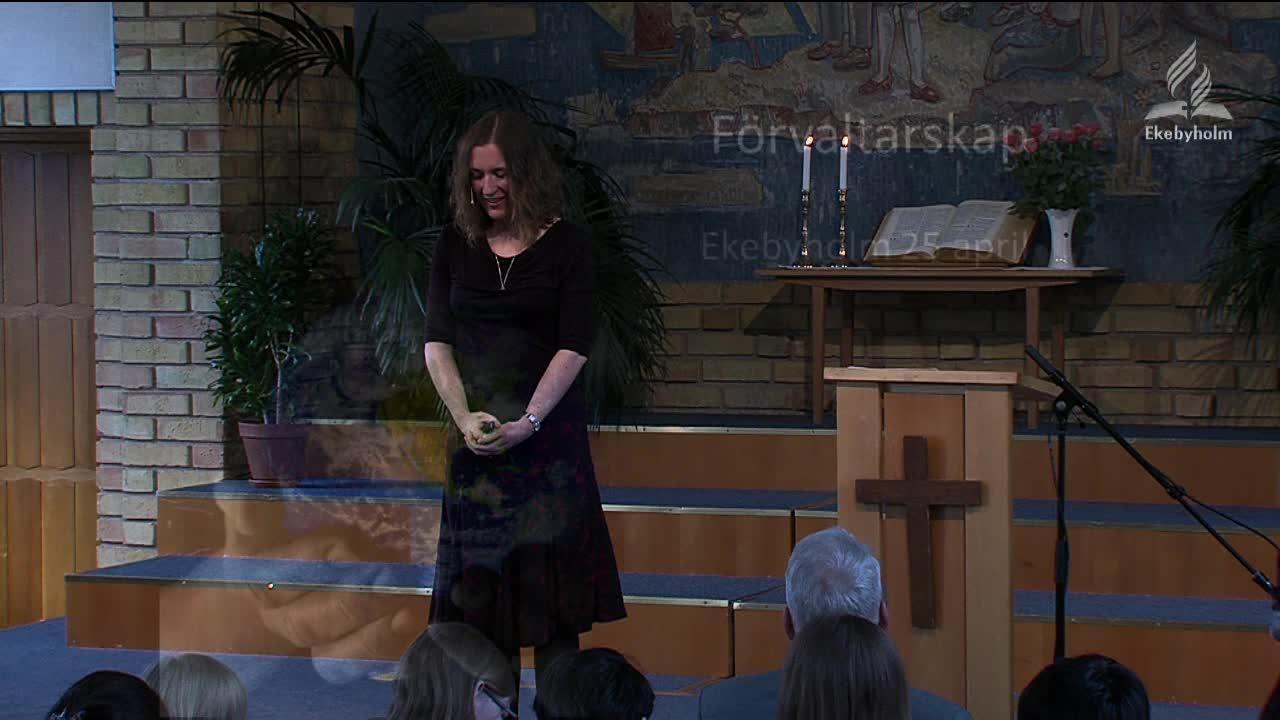 Vad är tiondegivandets syften? Hur och varför utvecklade adventistsamfundets pionjärer det system av tionde som vi har idag? Hör ett systematisk studium av tiondet i bibeln samt berättelser från Adventistsamfundets historia.