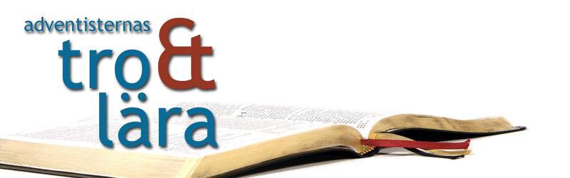 Adventisternas tro & lära i 28 punkter finns nu i en reviderad svensk översättning + studie- och samtalsfrågor! Du får den gratis, så beställ gärna fler att ge till intresserade i din närhet eller studera i smågrupp!